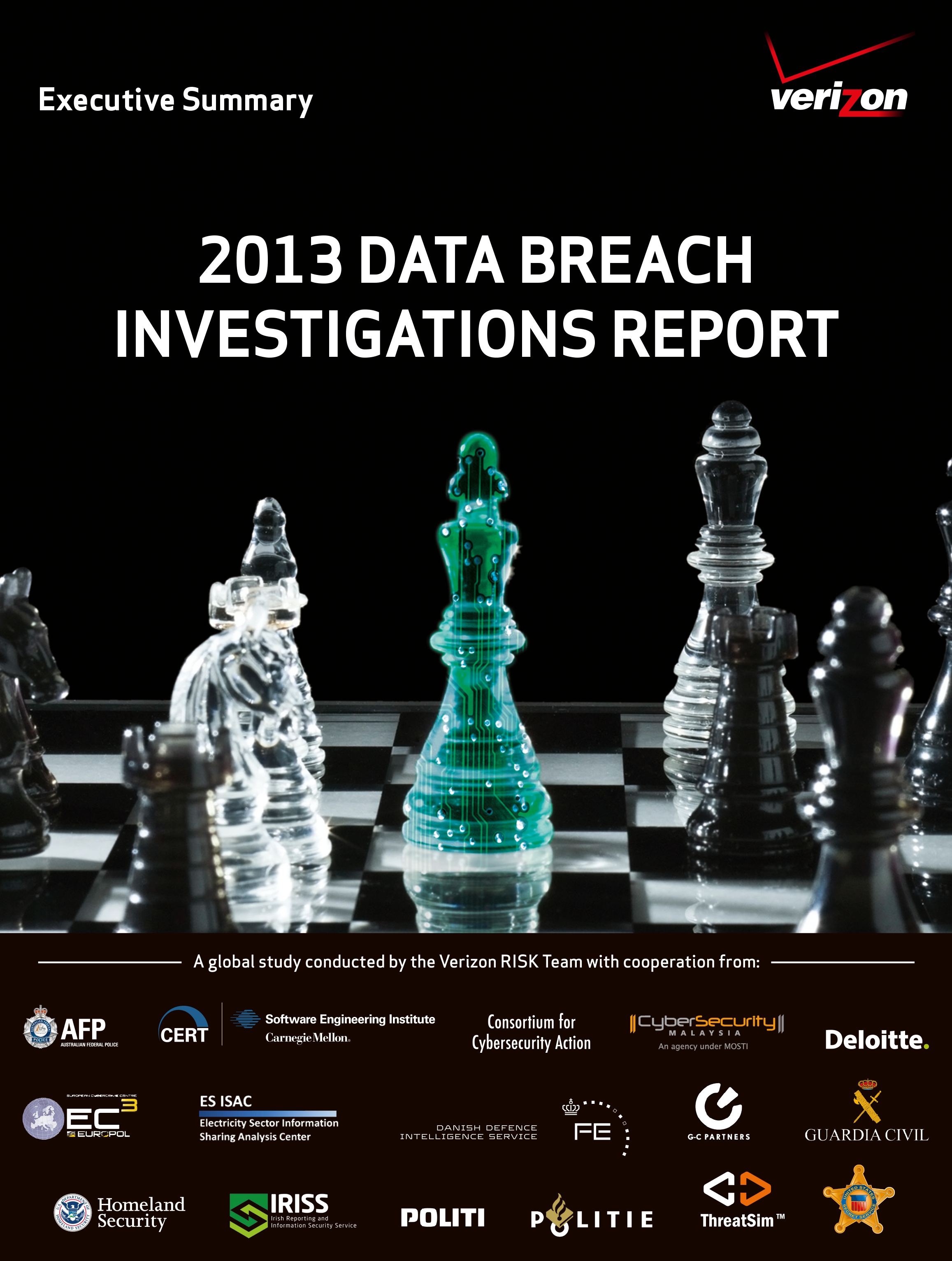 2013 Data Breach Investigations Report Executive Summary